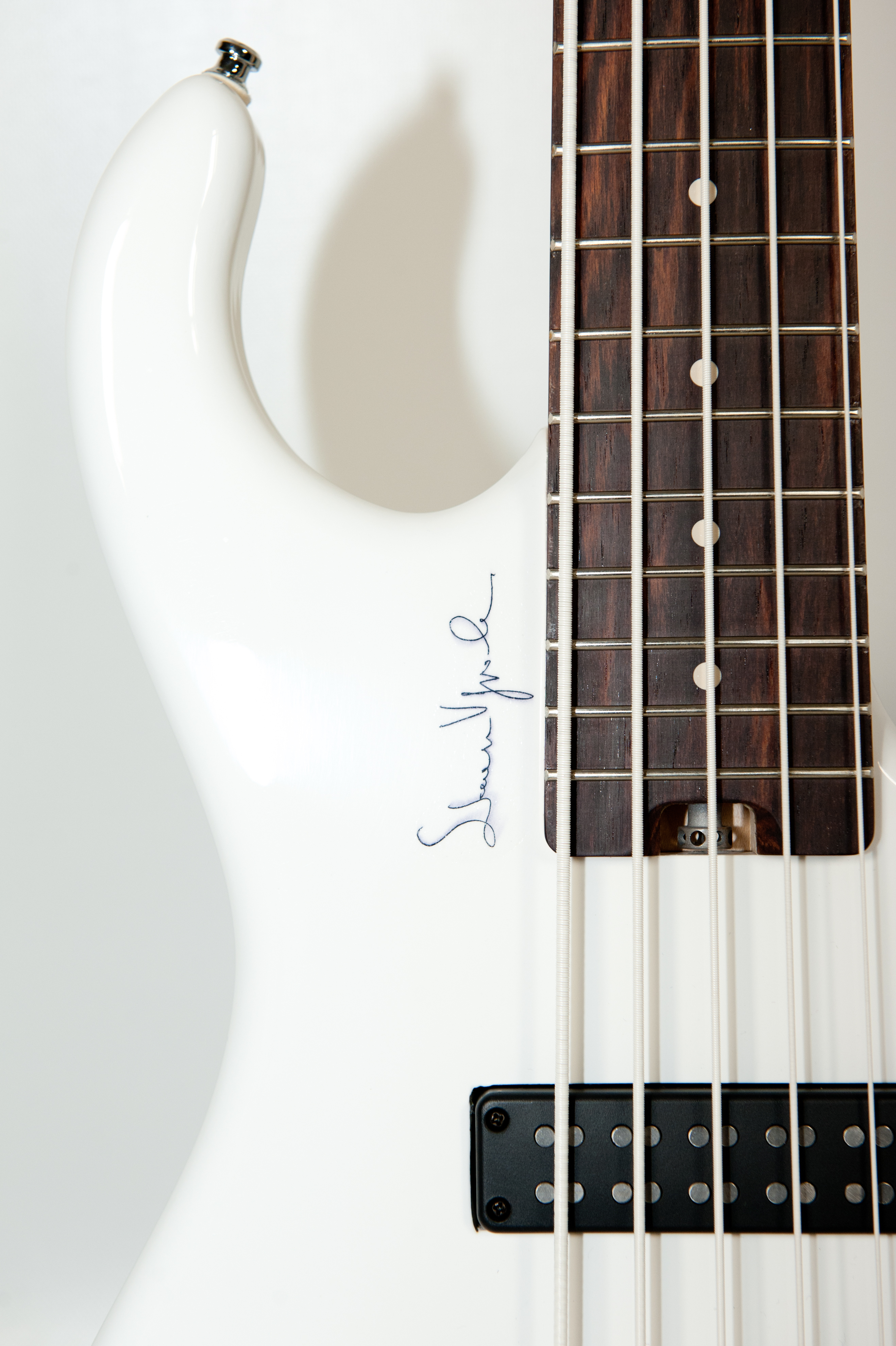 M2 Guitars Simone Vignola Signature